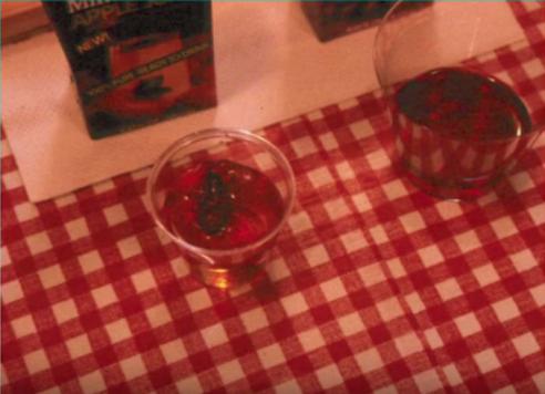 Kakerlake im Saftglas